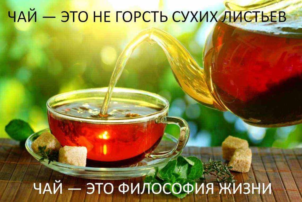 Примеры текстов рекламы чая и кофе, рекламные тексты для напитков
