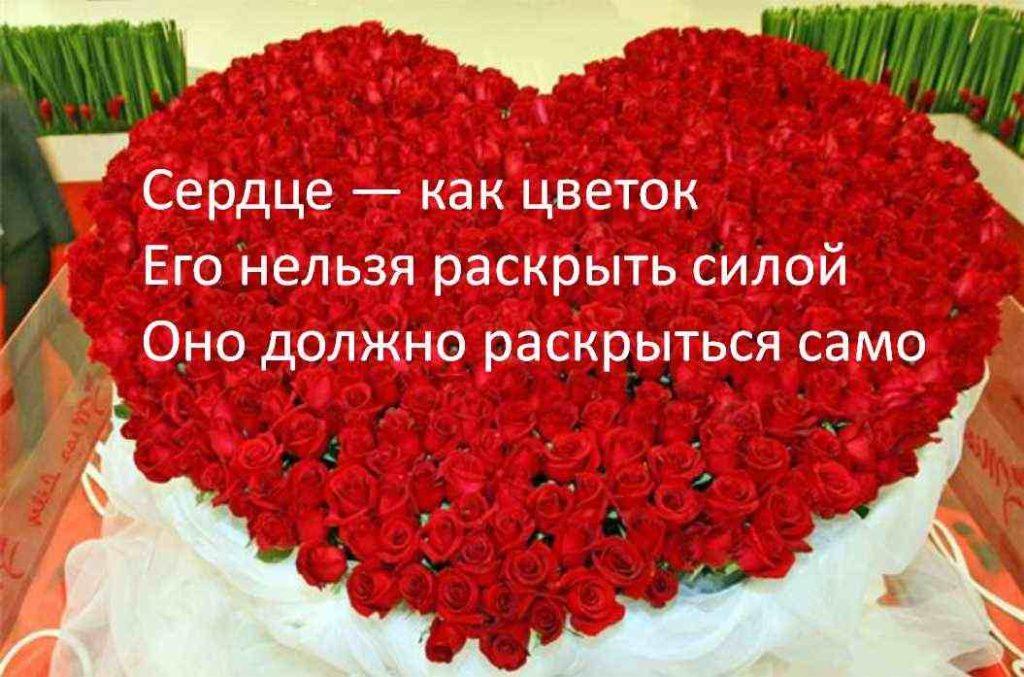 Продающий текст рекламы цветов примеры